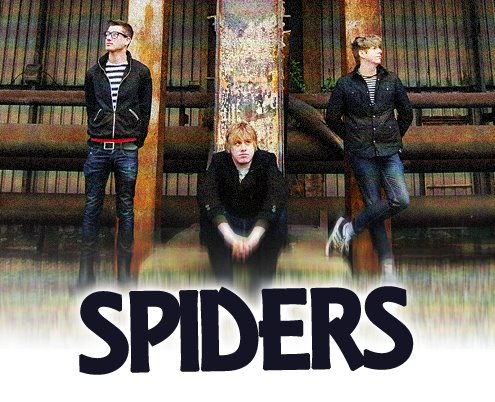 Video Of The Week: Spiders – Subtle Differences