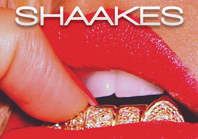 """Shaakes: """"Tasty"""" – pop sensibility from its party savvy hook to its club-banging production"""