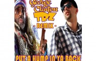 "TRZ remixes George Clinton into his funky ""Put a Hump in ya Back"" release!"