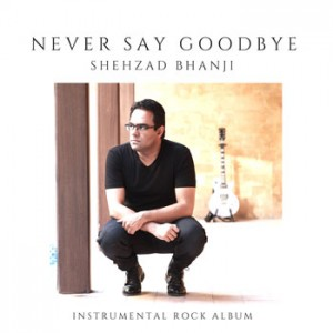 Never Say Goodbye - album cover