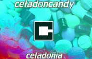 "CeladonCandy: ""Celadonia"" demands to be treated as a reflection of an artistic existence!"