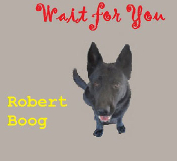 robert-boog-cover