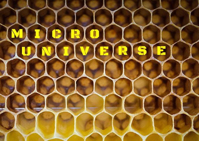 "Vladimir Vojnović: ""Micro Universe"" – a fantastic journey through a gorgeous world!"