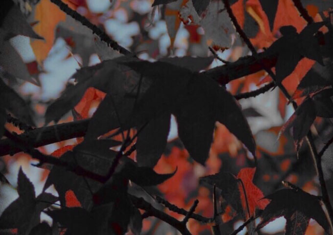 """FlxshWave: """"Fall Leaves (A6)"""" – an infectious soundscape!"""