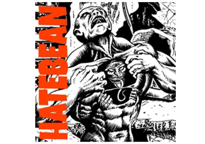 "HATEBEAN: ""FetusInFetu"" – conceptual, progressive and artful"