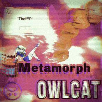 owlcat-cover