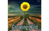 """Slang: """"Growing Wild"""" builds dense soundscapes with sparkling guitar riffs and solos"""
