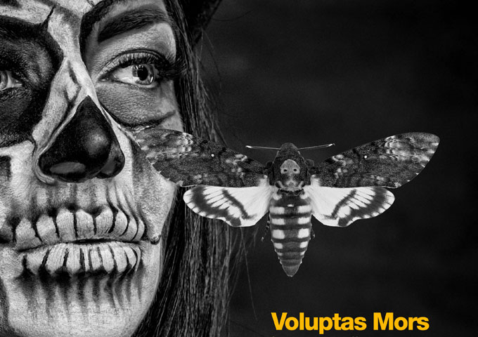 "Voluptas Mors: ""Immortality"" – deft sonic manipulation"