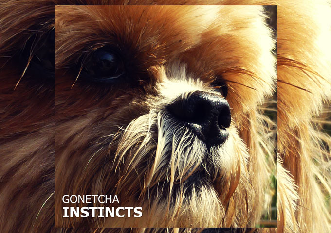 "GONETCHA – ""Instincts"" – Too clever for the mainstream!"