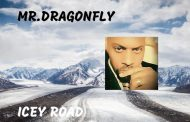 "Mr.Dragonfly – ""Icey Road"" is a rare hybrid, produced by an artist who clearly knows that this is his calling"