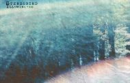 "StereoBird – ""Illuminated"" bursts into a wandering and wistful exploration"