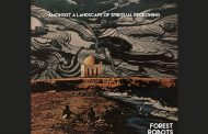"Forest Robots – ""Amongst A Landscape Of Spiritual Reckoning"" – a terrific piece of affecting art"