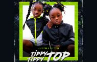 "Jai'dynn & Pai'tynn – ""Tippy Tippy Top"" – fun, clean, and concerned with the positive aspects of living"